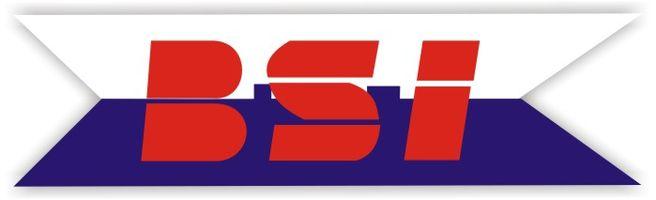 Logo Biuro Szybkiej Interwencji s.j. Z.Mroczek i Wspólnicy