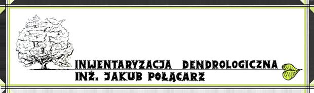Logo Inwentaryzacja dendrologiczna - Jakub Połącarz
