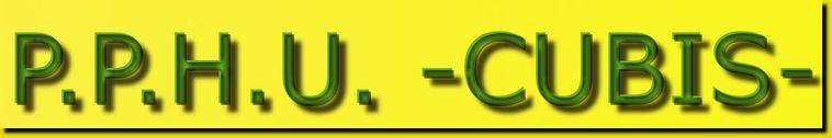 Logo P.P.H.U.-CUBIS-