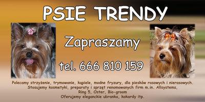 Logo Psie Trendy