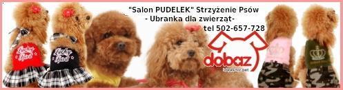 Logo Salon Pudelek Ubranka dla zwierząt, Strzyżenie Psów
