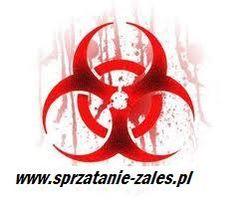 """Logo """"ZALEŚ"""" Paweł Zalewski"""