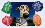LYSSETKY Międzynarodowy system identyfikacji psów zaszczepionych przeciwko wściekliźnie