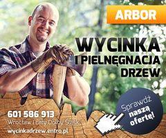 Logo Wycinka Drzew Wrocław Pielęgnacja drzew ARBOR