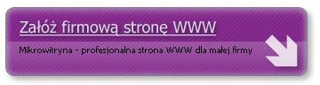 Profesjonalna strona WWW dla ma�ej firmy